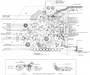 Sustainable Landscape Design Plan