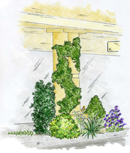 Commercial Landscape Design: Retail Perspective Sketch
